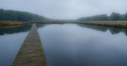 mist in de Zanderij Crailo, Hilversum, Noord Holland, Netherlands