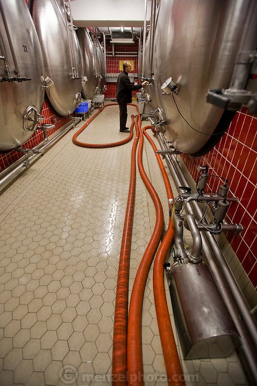 """Joachim Rösch, a brewmaster at the Ganter Brewery in Freiburg im Breisgau, Germany conducts a routine check of the factory.  (Joachim Rösch is featured in the book What I Eat: Around the World in 80  Diets.)   The caloric value of his day's worth of food in March was 2700 kcals. He is 44 years of age; 6 feet, 2 inches tall; and 207 pounds. The brewery's main hall showcases old polished copper vats, but Ganter now also uses stainless steel tanks with computerized controls in a blend of traditional and modern beer making. Joachim's job requires him to taste beer a number of times during the week, and unlike in wine tasting, he can't just taste then spit it out: """"Once you've got the bitter on the back of your tongue, you automatically get the swallow reflex, so down the chute you go,"""" he says. MODEL RELEASED."""