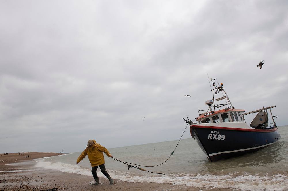 Hastings, England.  The millenial fishing traditon of Hastings faces trying odds to maintain a livelihood as a result of serverly restriced quotas and rising production costs.