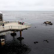 The platform area at the Monterey Bay Aquarium, which is located on Cannery Row in Monterey, California, on Friday July 13, 2012.(AP Photo/Alex Menendez)