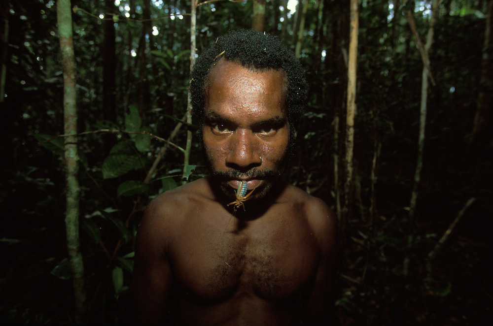 A Kombai man with an edible insect in his mouth in Papua, Indonesia. September 2000. The Kombai are a so-called treehouse people who build their homes high up in the trees.