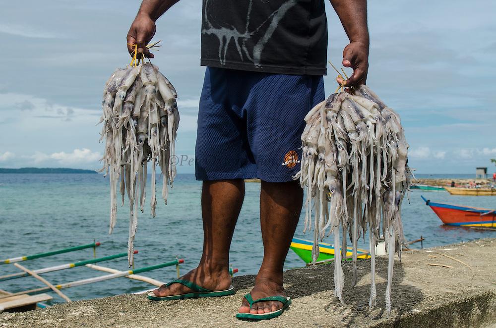 Local squid catch<br /> Biak Island<br /> West Papua<br /> Indonesia