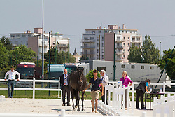 Vet check for the jumping horses<br /> WEG Test event dressage - Caen 2014<br /> © Hippo Foto - Leanjo de Koster