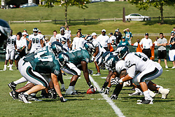 Philadelphia Eagles line up at the line of scrimmage during the Philadelphia Eagles NFL training camp in Bethlehem, Pennsylvania at Lehigh University on Saturday August 8th 2009. (Photo by Brian Garfinkel)