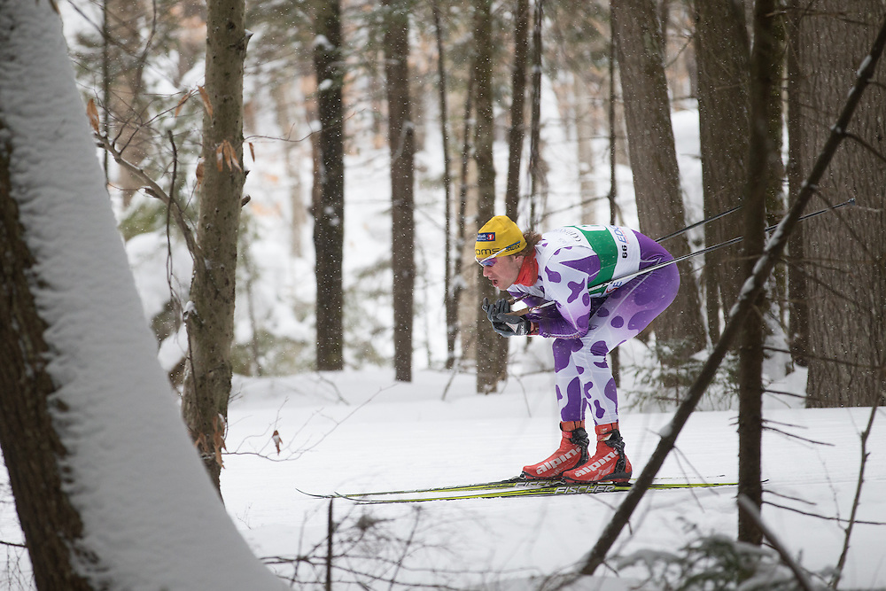Will Wicherski skis during the Middlebury College Winter Carnival Men's 10k Freestyle at Rikert Nordic Center on February 14, 2015 in Ripton, VT. (Dustin Satloff/Colby College Athletics)