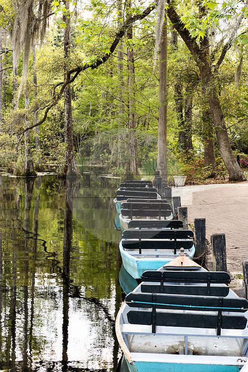 Rowboats at the blackwater bald cypress and tupelo swamp during spring at Cypress Garden April 9, 2014 in Moncks Corner, South Carolina.