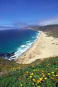 Garrapata State Park, Carmel, Big Sur, California<br />