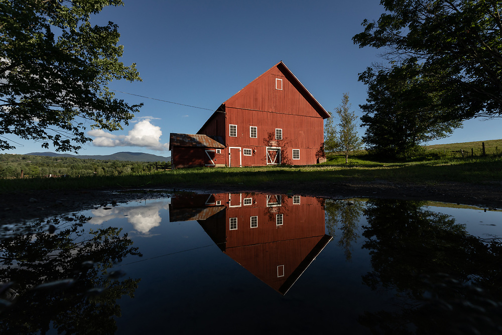 The 1850 Spear Barn reflecting on a warm summer afternoon in Stowe.