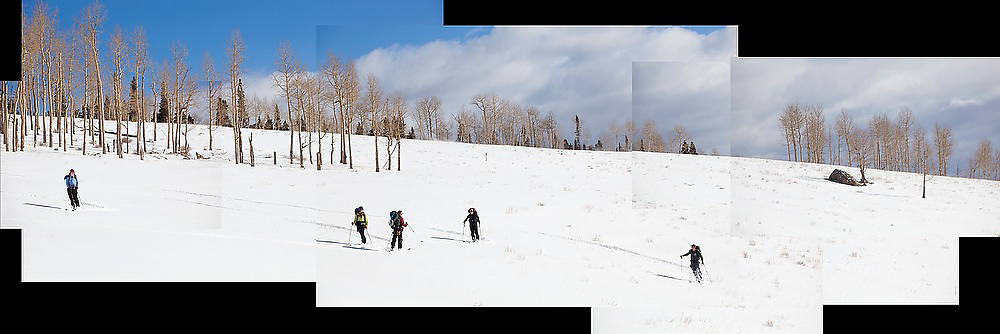 Backcountry skiers stand in an open aspen grove in Uncompahgre National Forest, Colorado.
