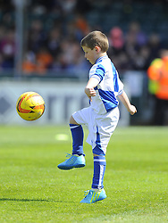 Mascot - Photo mandatory by-line: Joe Meredith/JMP - Mobile: 07966 386802 03/05/2014 - SPORT - FOOTBALL - Bristol - Memorial Stadium - Bristol Rovers v Mansfield - Sky Bet League Two