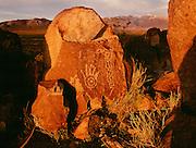 Ancient petroglyph carvings, Three Rivers Petroglyphs National Monument near Alamogordo, New Mexico
