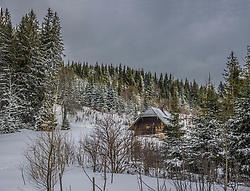 Log cabin on snowcapped mountain by coniferous trees against sky