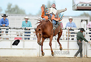 Bareback rider Cimmaron Gerke loses his hate during the CPRA Rodeo at the Boulder County Fairgrounds on Sunday. Go to timescall.com for more photos.<br /> <br /> Matthew Jonas / Staff Photographer Aug. 2, 2015