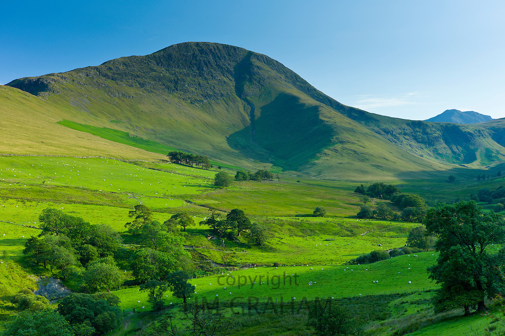 Robinson Fell mountain part of the Derwent Fells range of the Cumbrian mountains in Lake District National Park, UK