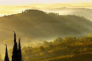 Views across the vineyards and olive groves of the Chianti Region from San Gimignano, Tuscany Italy. .<br /> <br /> Visit our ITALY PHOTO COLLECTION for more   photos of Italy to download or buy as prints https://funkystock.photoshelter.com/gallery-collection/2b-Pictures-Images-of-Italy-Photos-of-Italian-Historic-Landmark-Sites/C0000qxA2zGFjd_k<br /> If you prefer to buy from our ALAMY PHOTO LIBRARY  Collection visit : https://www.alamy.com/portfolio/paul-williams-funkystock/sangimignano.html
