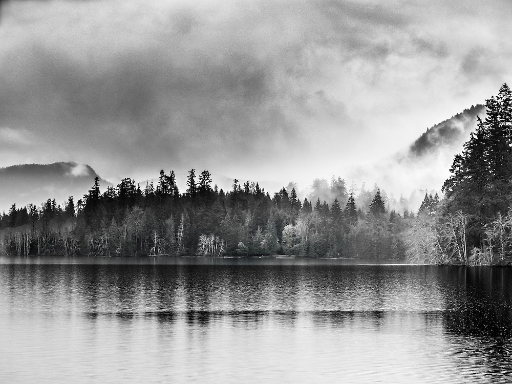 It had just stopped raining and fog is forming in the forest surrounding Lake Crescent, on this spring day in Washington state.