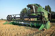 Modern combine harvester in barley