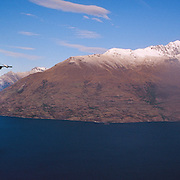 Mountain bike riders ride the Skyline scenic gondola to the Queenstown Mountain Bike track on Ben Lomond above  Queenstown. Queenstown is nestled on the shores of the crystal clear waters of Lake Wakatipu in the Central Otago region of the South Island of New Zealand. Queenstown is New Zealand's premier tourist destination providing an abundance of year round outdoor activities for both young and old. Queenstown, Central Otago, South Island, New Zealand. Photo Tim Clayton..