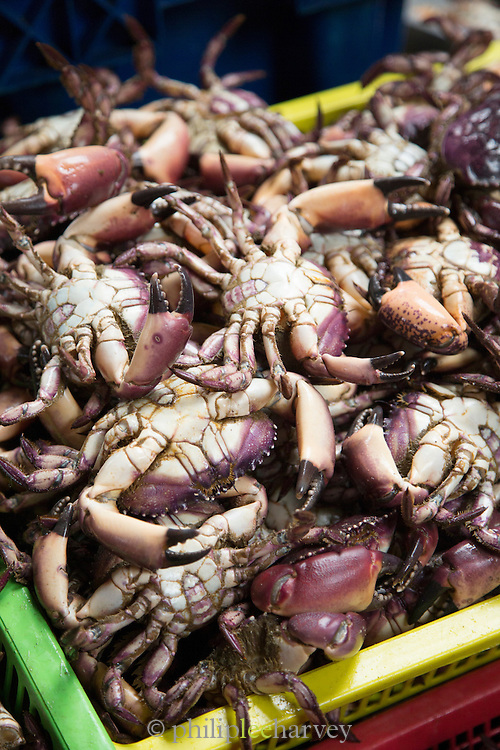 Crabs being sold at a Fish Market in Villa Mar?a del Triunfo district of Lima, Peru, South America