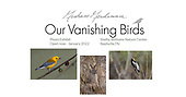 Our Vanishing Birds Exhibit