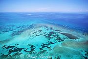 Looe Key Reef, showing spur-and-groove coral formations of bank reef, Florida Keys National Marine Sanctuary, Florida ( Western North Atlantic Ocean )