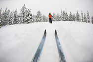 Low angle view of cross country ski tips and one young woman nordic skiing on a cross country trial in the snow in Bend, Oregon. (releasecode: jk_mr1033) (Model Released)