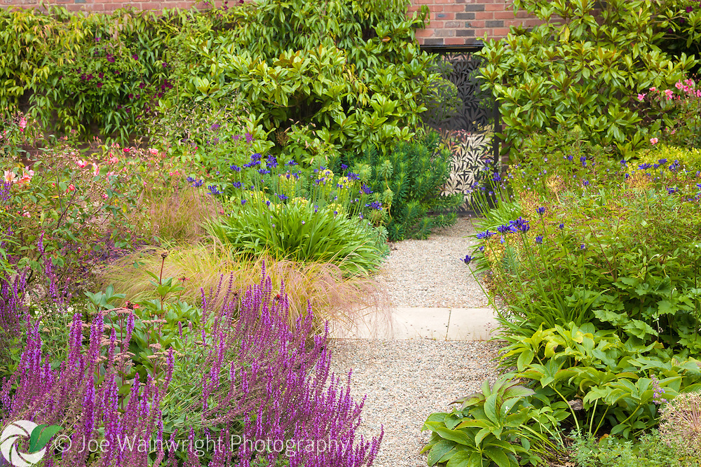 A path through the gardens at Cogshall Grange, Cheshire - designed by Tom Stuart-Smith. Photographed in July