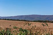 Luray, VA (Landscapes)