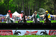 24  March, 2012:  Horses and riders take a look at the first hurdle in the 2 mile Maiden Hurdle at Aiken.