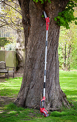 Long handled chainsaw for pruning high branches