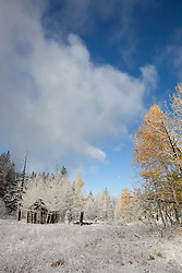 """""""Shack near Brockway Summit 2"""" - This old shack was photographed along Hwy 267 near Brockway Summit, CA on a snowy fall morning."""