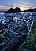 Second Beach on the Olympic National Park Coastal Strip at sunset, Washington State, USA, Pacific Northwest