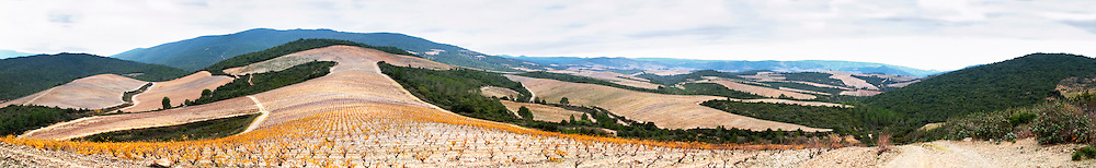 Chateau des Erles. In Villeneuve-les-Corbieres. Fitou. Languedoc. Spectacular view vista over the hilltop vineyard dominated by schist. France. Europe.