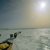 1993 Training Expedition. John Stetson mushes across Great Slave Lake, NWT, Canada.