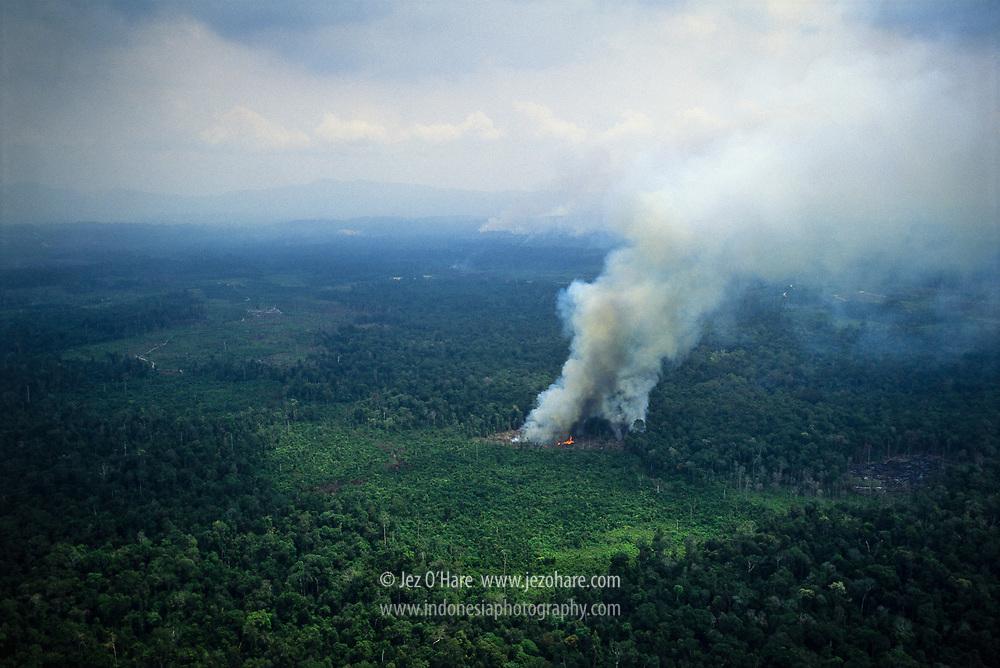 Deforestation & burning, Riau, Sumatra, Indonesia.