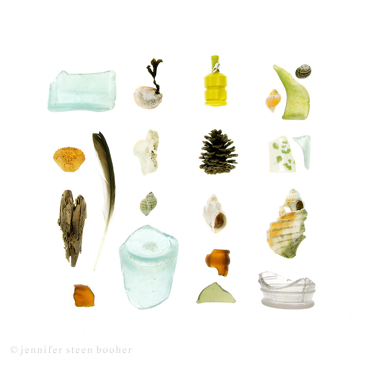 Sea glass bottles, Green Crab (Carcinus maenas), driftwood, feather, Common Slipper Shell(Crepidula fornicata) with a strand of Rockweed (Fucus distichus) attached, bone, Dog Whelk (Nucella lapillus), Waved Whelk (Buccinum undatum), pine cone, plastic confetti popper, Common Periwinkle(Littorina littorea), and beach china.        <br /> [This photograph is only available as a limited edition through www.eyebuyart.com]
