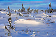 Winter along the Hudson Bay Coastline<br />Churchill<br />Manitoba<br />Canada