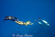 Emily Sepeta swims with Hawaiian spinner dolphins or Gray's spinner dolphin, Stenella longirostris longirostris, off north Kona, Hawaii ( the Big Island ), USA ( Central Pacific Ocean ) MR 490