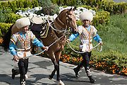 A golden dun Ahal Teke horse called Melehan is paraded as gift from a Minister to the President, prior to the  'Most Beautiful Horse in Turkmenistan 2010' competition at the City Hippodrome in Ashgabat, on the occasion of National Turkmen Horse Day