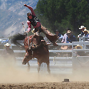 Ross Dowling from Ranfurly in action during the Open Saddle Bronc at the Wanaka Rodeo. Wanaka, South Island, New Zealand. 2nd January 2012