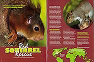 Publication: RANGER RICK (USA), November 2010, Photography by Heidi & Hans-Jürgen Koch/animal-affairs.com