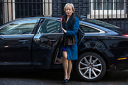 © Licensed to London News Pictures. 13/11/2018. London, UK. Leader of the House of Commons Andrea Leadsom arrives on Downing Street for the Cabinet meeting. Photo credit: Rob Pinney/LNP