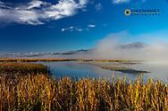 Wetlands at the Lee Metcalf National Wildlife Refuge near Stevensville, Montana, USA