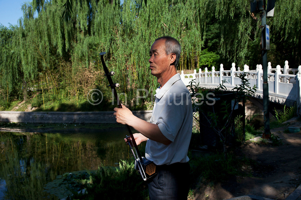 People playing instruments in Zizhuyuan Park in Beijing, China. This park is well known as a place where middle aged or elderly Chinese come. This can take all forms including some surprising ones. Purple Bamboo Park (Zi Zhu Yuan Gongyuan) also called Zizhuyuan Park or Black Bamboo Park largest parks in Beijing. It is located in the Haidian District. The park consist of three connecting lakes covering over a total area of 48 hectares. Typical of the classical Chinese garden style, and like many of Beijing's parks and gardens, it is a mountain-water landscaped garden. Constructed around canals and large lakes, the Bamboo Park is known for its liberal use of verdant bamboo groves. The garden has a variety of bamboos on display. Young people also believe that if they go to the park as a couple that their relationship is doomed to fail.