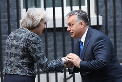 November 9, 2016 - London, United Kingdom - Image licensed to i-Images Picture Agency. 09/11/2016. London, United Kingdom. Prime Minister Theresa May with Prime Minister Viktor Orban of Hungary in Downing Street, London. Picture by Stephen Lock / i-Images (Credit Image: © Stephen Lock/i-Images via ZUMA Wire)