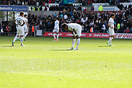 Swansea players inc Leroy Fer © are dejected at the end of the game.  Premier league match, Swansea city v Middlesbrough at the Liberty Stadium in Swansea, South Wales on Sunday 2nd April 2017.<br /> pic by Andrew Orchard, Andrew Orchard sports photography.