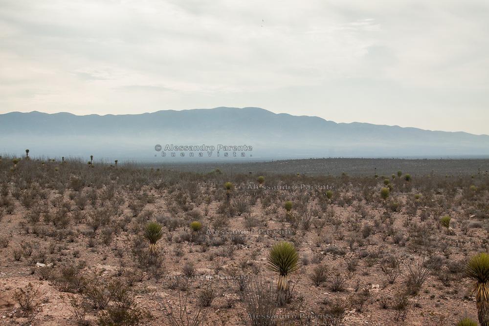La montagna di wirikuta con il deserto ai suoi piedi.<br /> The holy mountain of wirikuta with the desert at his feet.