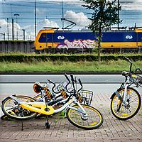 """Nederland,Amsterdam, 4 augustus 2017.<br />De gemeente Amsterdam doet de deelfiets in de ban. Alle deelfietsen die in de openbare ruimte worden verhuurd, worden van straat gehaald, zodat er """"plek in het rek is en blijft"""", aldus de gemeente.<br /> <br /> De deelfiets kan worden gehuurd door middel van een app. Daarmee betaalt een klant de fiets en wordt die van het slot gehaald. Als de klant hem heeft gebruikt, kan hij hem overal wegzetten.<br /> <br /> En dat levert frustratie op, omdat schaarse fietsplekken onnodig bezet worden. """"We zijn hard aan het werk om meer plek voor de fietser te realiseren en die willen we niet door de vele commerciële deelfietsen laten innemen"""", zegt wethouder Litjens.<br /> <br /> Paal en perk stellen<br /> <br /> De afgelopen tijd is er in de stad een wildgroei aan nieuwe bedrijfjes die de deelfiets aanbieden. Het concept zou eigenlijk het aantal fietsen in de stad moeten verminderen, maar het werkt averechts, concludeert de wethouder. """"Tot nu toe lijken het er alleen maar meer te worden, daar willen we paal en perk aan stellen.""""<br /> <br /> Volgens de gemeente is het ook wettelijk niet toegestaan om de openbare ruimte als uitgifteplek voor de fietsen te gebruiken. De bedrijven moeten nog op de hoogte worden gesteld van de nieuwe aanpak. De gemeente wil met de bedrijven nadenken over hoe de parkeerdruk door middel van de deelfietsen wel kan worden verminderd.<br /><br /><br /><br />Foto: Jean-Pierre Jans"""