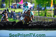April 7, 2012 - Richard Boucher and Class Brahms jump the last to win in the CenturyLink Hurdle Stoneybrook Steeplechase, Raeford NC