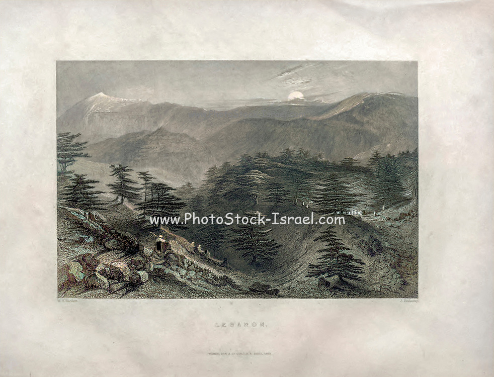 Machine colourised (AI) Lebanon landscape (1840) From Syria, the Holy Land, Asia Minor, etc. : by  Carne, John, 1789-1844; Bartlett, W. H. (William Henry), 1809-1854; Purser, William Publisher: London, Fisher [1839-40]